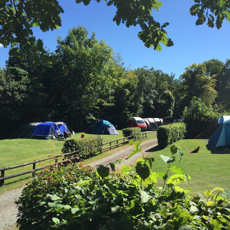 Fox Leisure site - Herefordshire - 3705 - Main