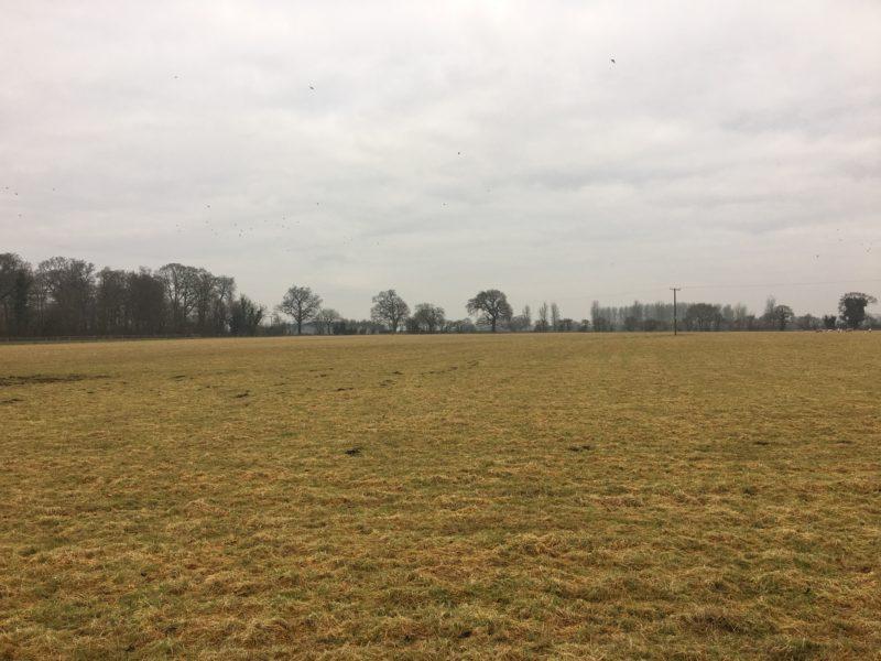 Fox Leisure site - Staffordshire - 3787 - 4