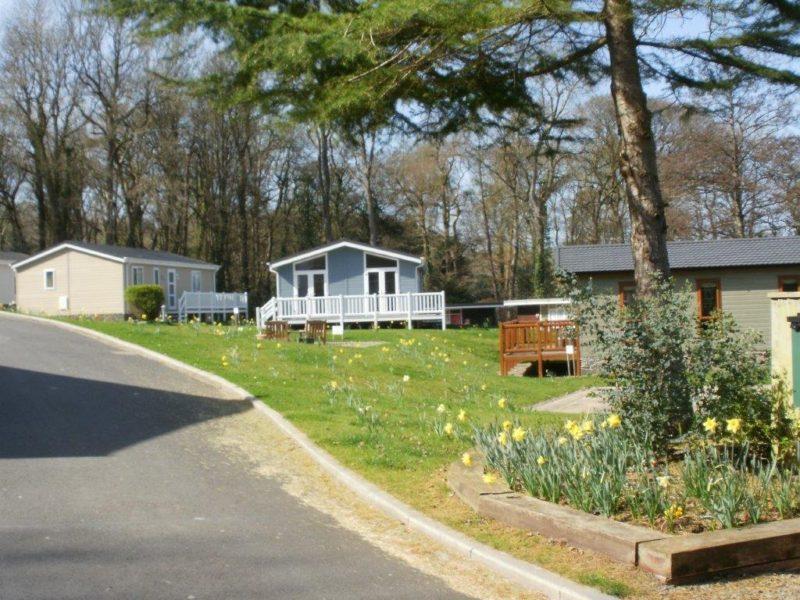 Fox Leisure site - Ceredigion - 3702 - 2