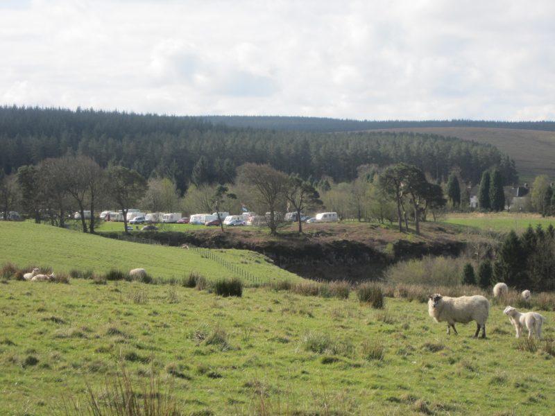 Fox Leisure site - Northumberland - 3819 - Main