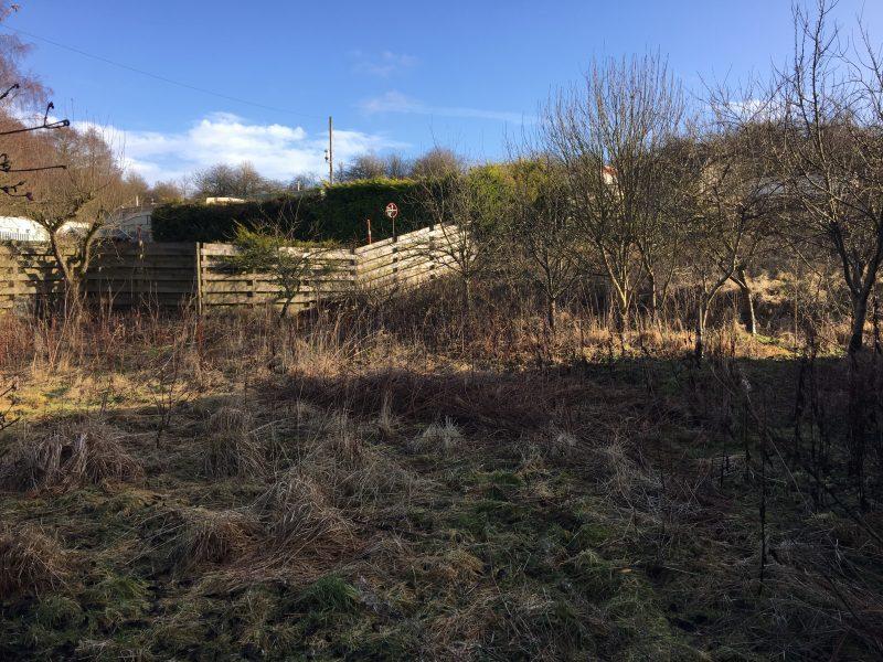Fox Leisure site - Northumberland - 3852 - 4