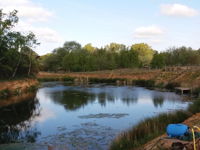 Fox Leisure site - Suffolk - 3932 - Main
